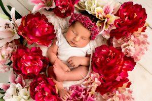 Babyfotografie in rhein erft kreis