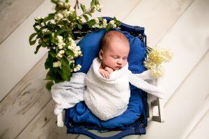 Neugeborene Fotograf in Rhein-Erft-Kreis